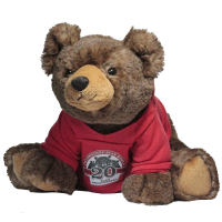 20 year anniversary bear plush grizzly red hoodie